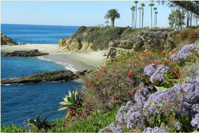 California - Classic West Coast 4